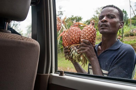 A vendor selling locally grown pineapples along the road. In reality it is must more chaotic and crowded than the image depicts.